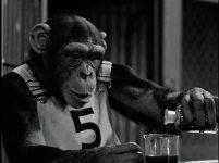 monkeybusiness2