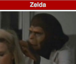 The Legend of Zelda: Chimp's Awakening